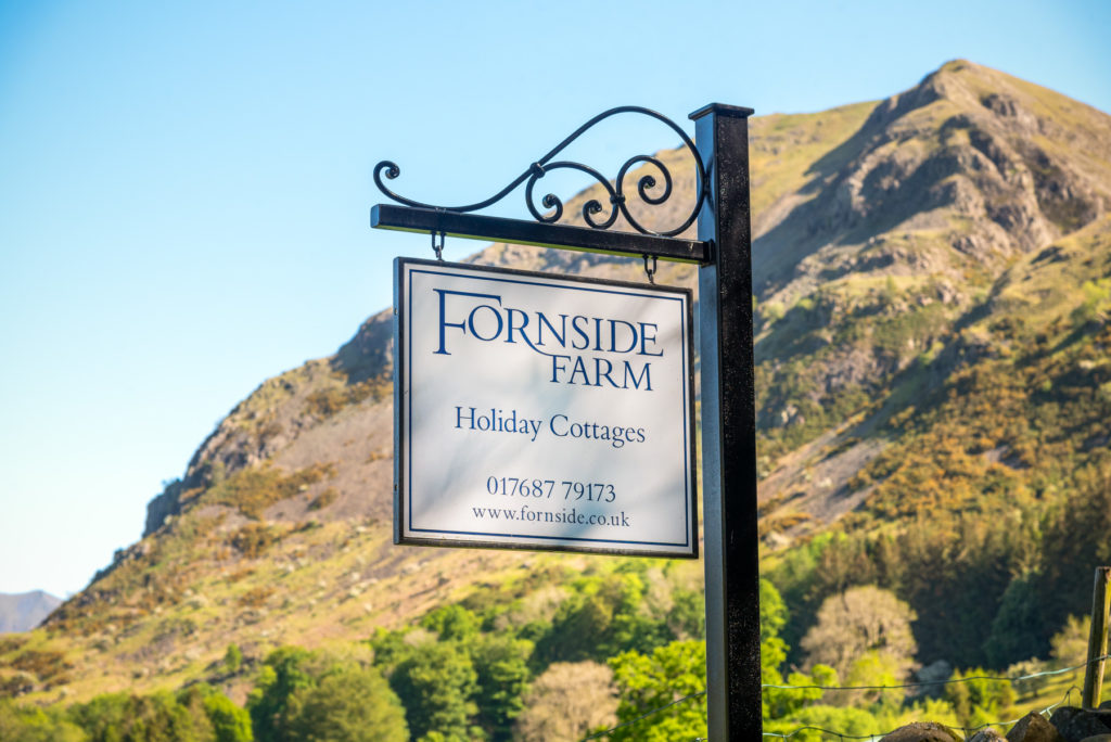 News from Fornside Farm